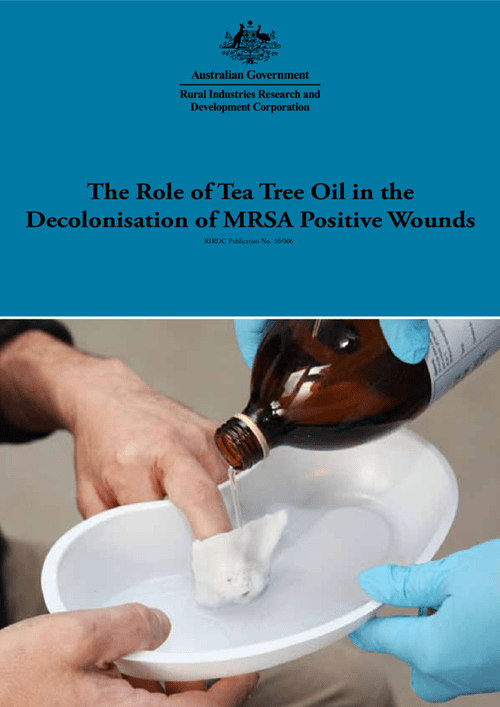 The Role of Tea Tree Oil in the Decolonisation of MRSA Positive Wounds - image
