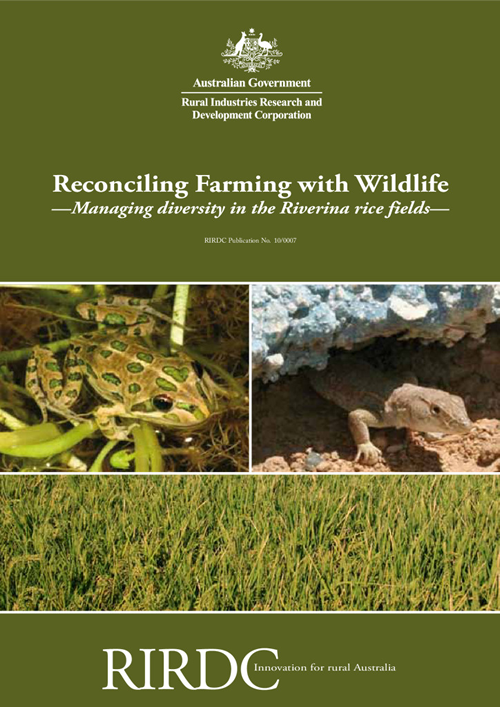 Reconciling Farming with Wildlife: Managing Biodiversity in the Riverina Rice Fields - image