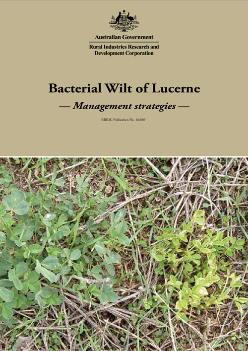 Bacterial Wilt of Lucerne: Management strategies - image