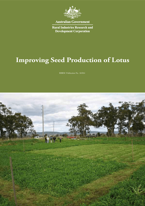 Improving Seed Production of Lotus - image