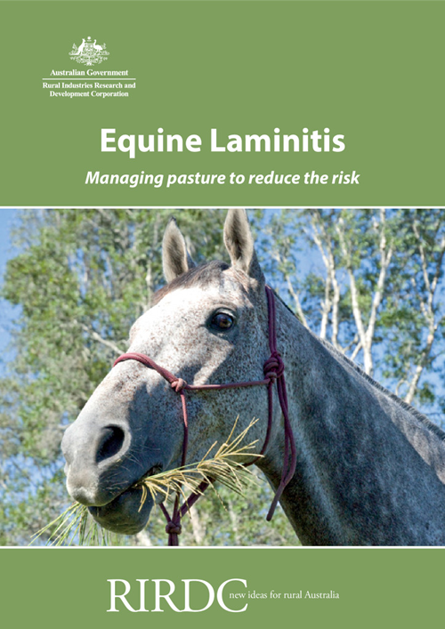 Equine Laminitis - Managing pasture to reduce the risk - image