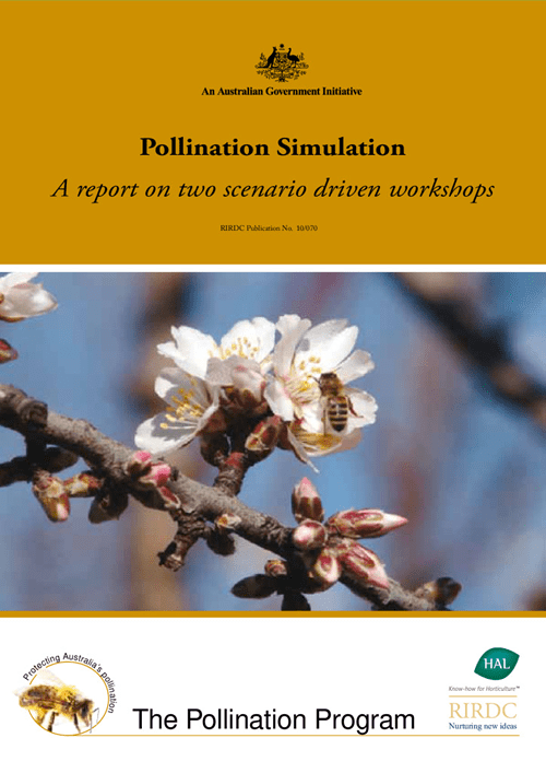 Pollination Simulation - A report on two scenario driven workshops - image