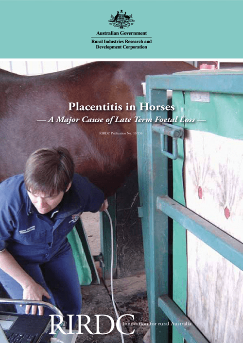 Placentitis: A major cause of late term foetal loss - image