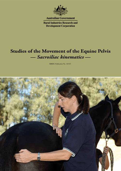 Studies of the Movement of the Equine Pelvis: Sacroiliac kinematics - image