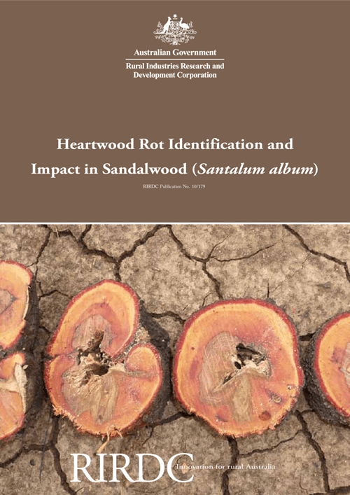 Heartwood Rot Identification and Impact in Sandalwood (Santalum album) - image