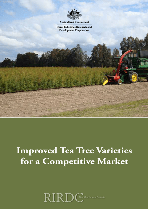 Improved Tea Tree Varieties for a Competitive Market - image