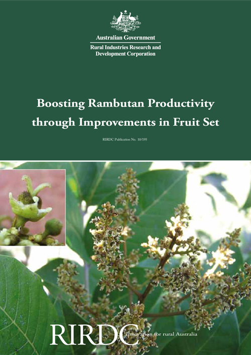 Boosting Rambutan Productivity through Improvements in Fruit Set - image