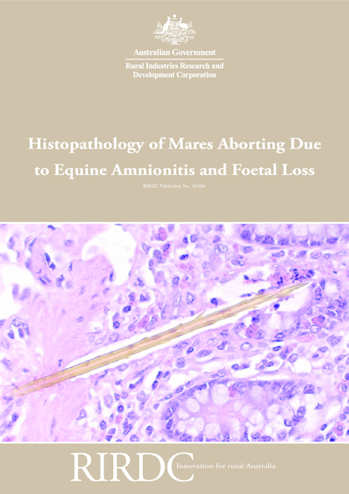 Histopathology of Mares Aborting Due to Equine Amnionitis and Foetal Loss - image