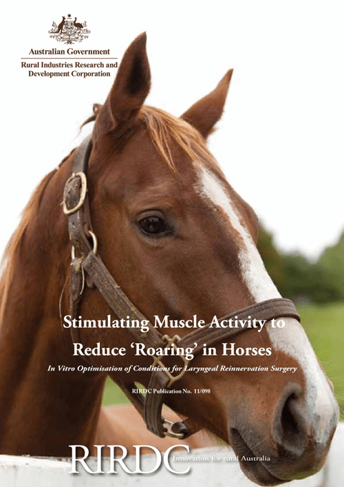 Stimulating Muscle Activity to Reduce 'Roaring' in Horses - image