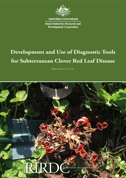 Development and Use of Diagnostic Tools for Subterranean Clover Red Leaf Disease - image