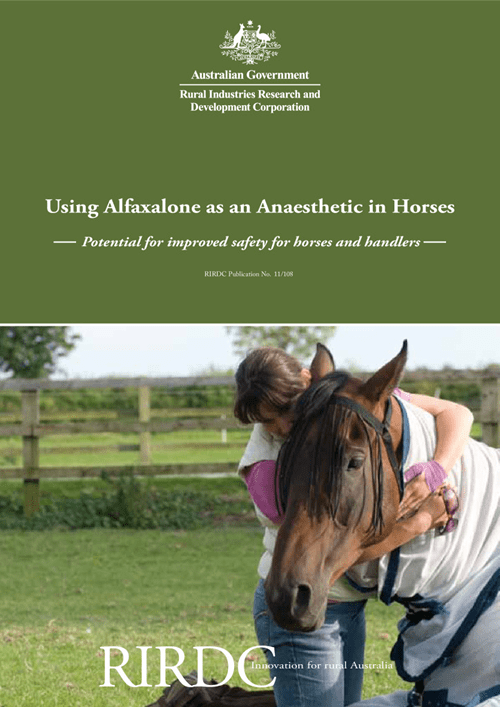 Using Alfaxalone as an Anaesthetic in Horses: Potential for improved safety for horses and handlers - image