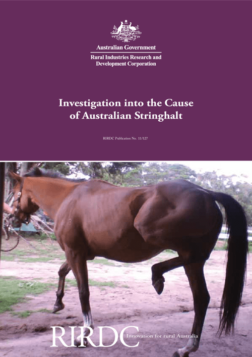 Investigation into the Cause of Australian Stringhalt - image