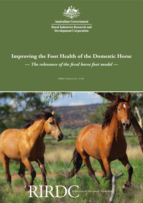 Improving the Foot Health of the Domestic Horse: The relevance of the feral horse foot model - image