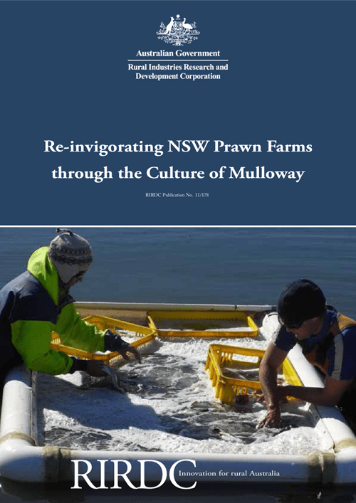 Re-invigorating NSW Prawn Farms through the Culture of Mulloway - image