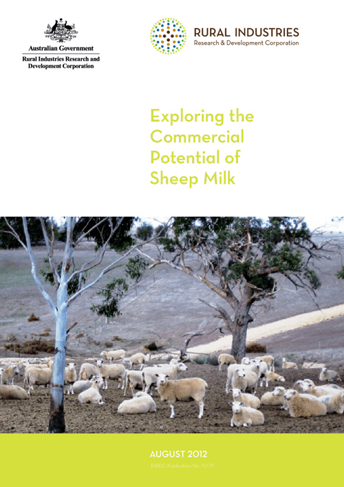 Exploring the Commercial Potential of Sheep Milk - image