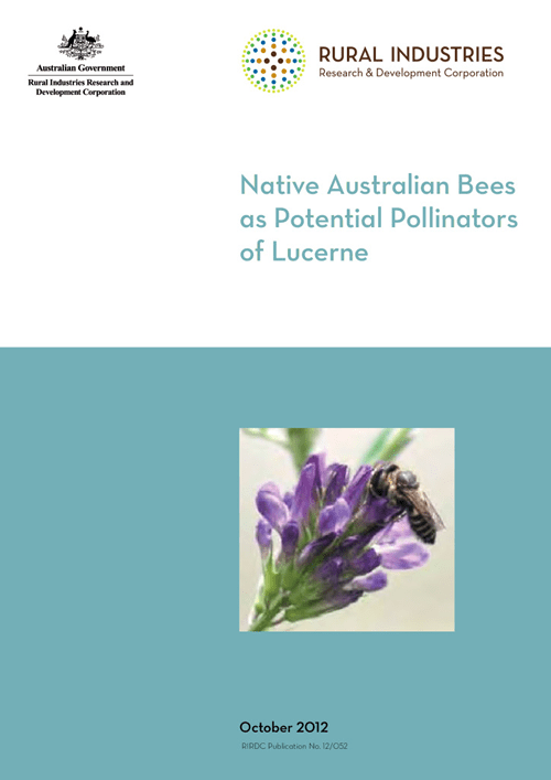 Native Australian Bees as Potential Pollinators of Lucerne - image