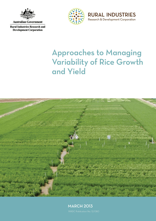 Approaches to Managing Variability of Rice Growth and Yield - image