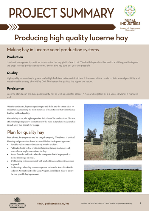 Producing quality lucerne hay: project summary - image