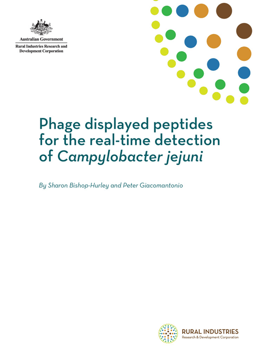 Phage displayed peptides for the real-time detection of Campylobacter jejuni - image