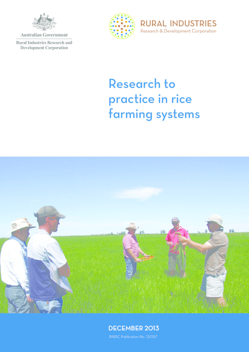 Research to practice in rice farming systems - image