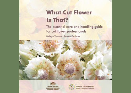 What Cut Flower is That? The essential care and handling guide for cut flower professionals - image
