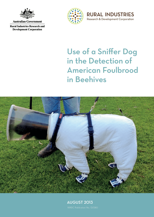 Use of a Sniffer Dog in the Detection of American Foulbrood in Beehives - image