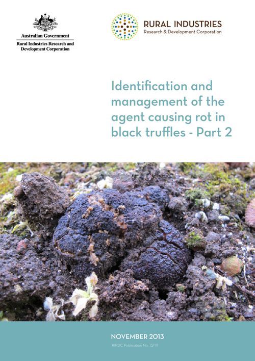 Identification and management of the agent causing rot in black truffles - Part 2 - image