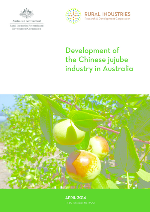 Development of the Chinese jujube industry in Australia - image