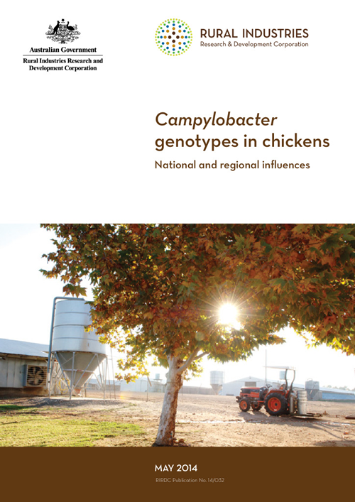 Campylobacter genotypes in chickens –National and regional influences - image