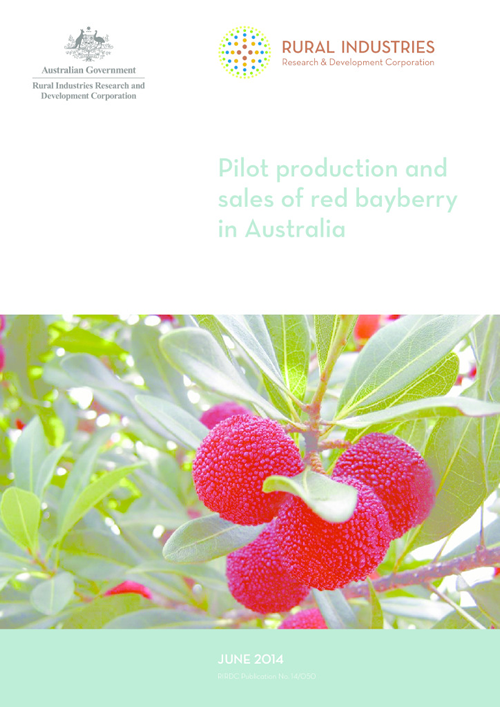Pilot production and sales of red bayberry in Australia - image