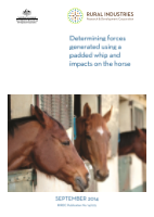 Determining forces generated using a padded whip and impacts on the horse - image
