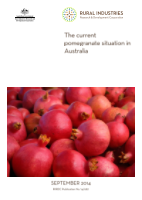 The current pomegranate situation in Australia - image