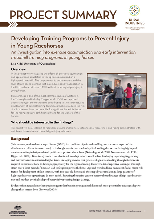 Developing training programs to prevent injury in young racehorses - image