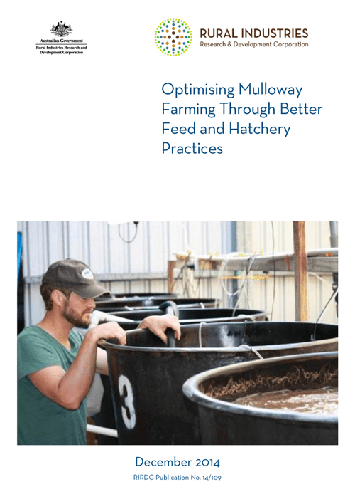 Optimising Mulloway Farming Through Better Feed and Hatchery Practices - image