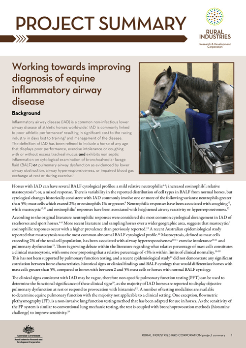 Working towards improving diagnosis of equine inflammatory airway disease - image