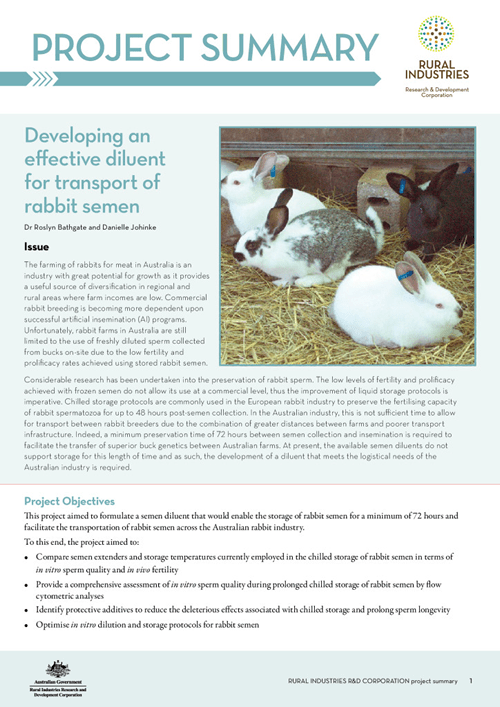 Developing an effective diluent for transport of rabbit semen - image