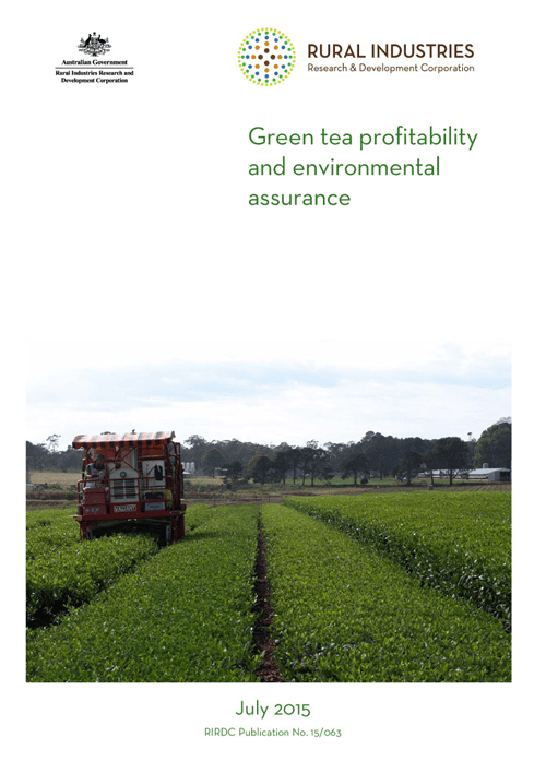 Green tea profitability and environmental assurance - image