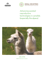 Advancing assisted reproductive technologies in camelids (especially the alpaca) - image
