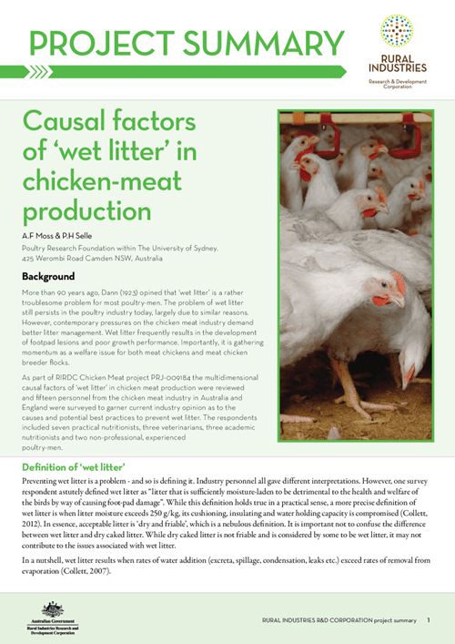 Causal factors of 'wet litter' in chicken-meat production - image