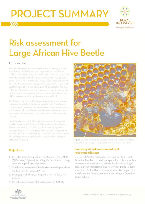 Risk assessment for Large African Hive Beetle – Project Summary - image