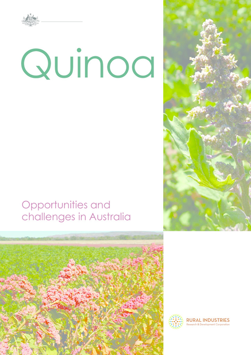 Quinoa — Opportunities and challenges in Australia - image