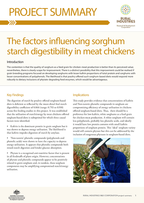 The factors influencing sorghum starch digestibility in meat chickens - image