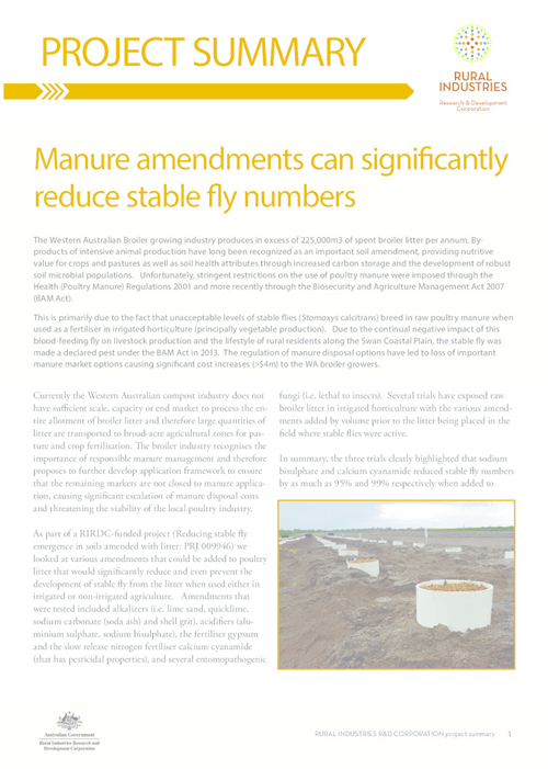 Manure amendments can significantly reduce stable fly numbers - image