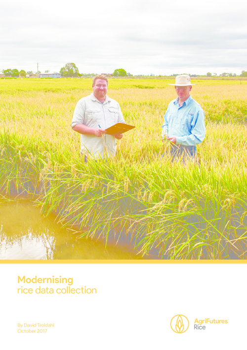 Modernising rice data collection - image