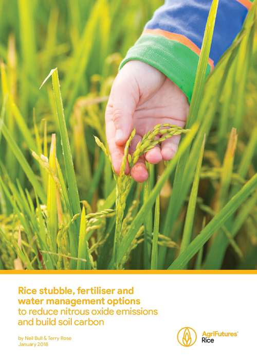 Rice stubble, fertilier and water management options to reduce nitrous oxide emissions and build soil carbon - image