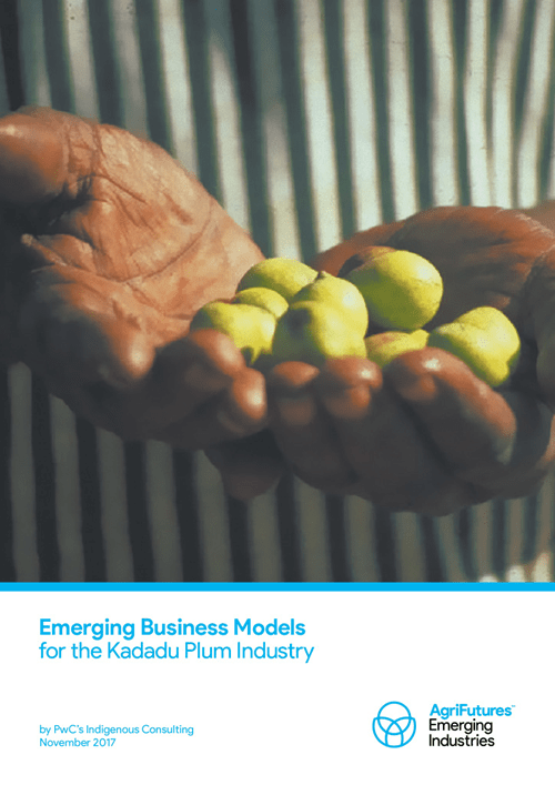 Emerging Business Models for the Kakadu Plum Industry - image